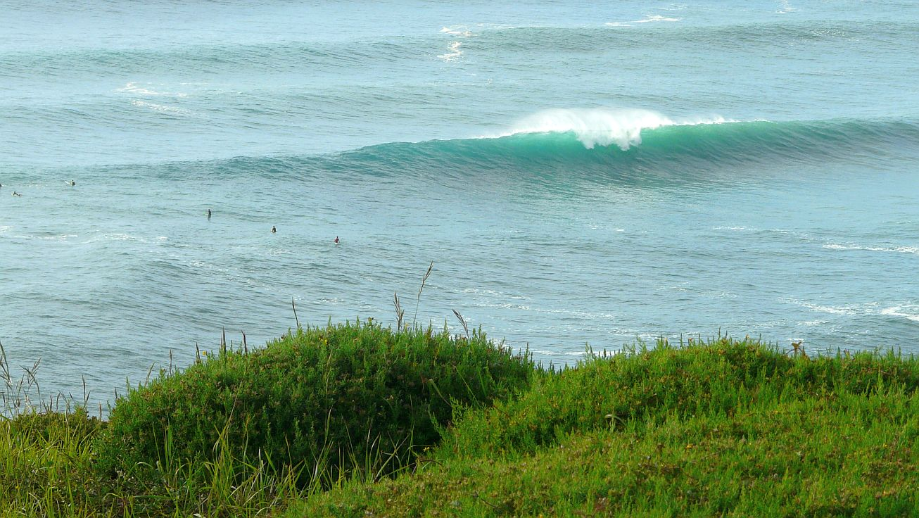 surf menakoz 2015 22