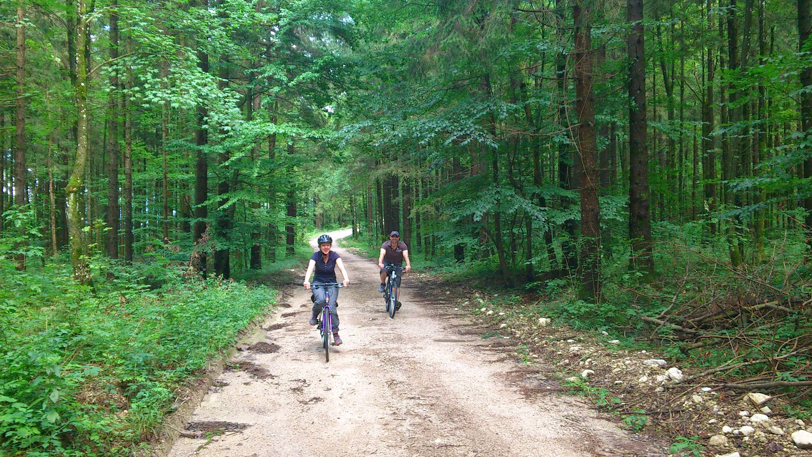 The forest track provides a lovely bike route to get between Ebensee and Bad Ischl.