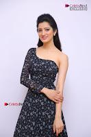 Telugu Actress Richa Panai Stills in One Shoulder Floral Long Dress at Rakshaka Bhatudu Movie Interview  0037.JPG