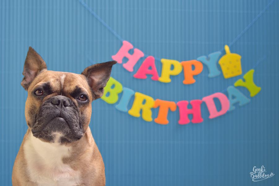 Happy Birthday Geburtstag Geburtstagsglückwünsche Geburtstagskarte Französische Bulldogge French Bulldog BDay
