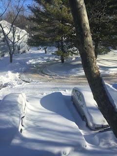 January 2016 snow on my car