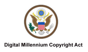 KaranMobi DMCA Copyright Infringement Notification