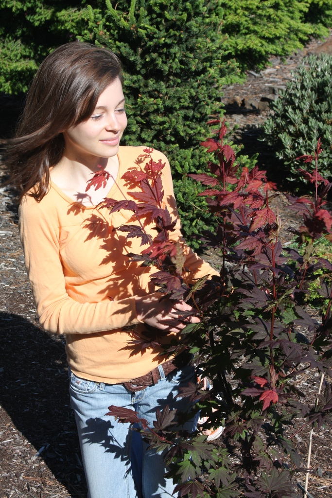 Flora Wonder Blog The New Era