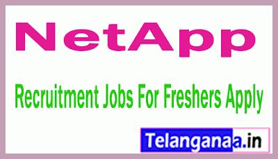 NetApp Recruitment Jobs For Freshers Apply