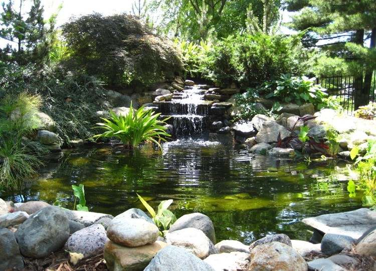 Cascade bassin de jardin- 27 idées pour créer votre havre de paix ...