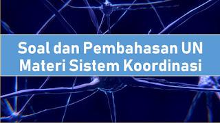 Soal dan Pembahasan UN Materi Sistem Koordinasi (Saraf, Indra, dan Hormon)