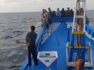 Pole And line yakni salah satu jenis alat untuk menangkap ikan Kabar Terbaru- MENANGKAP IKAN DENGAN POLE AND LINE