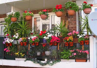 Заквітчаний балкон