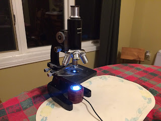 Microscope light in use