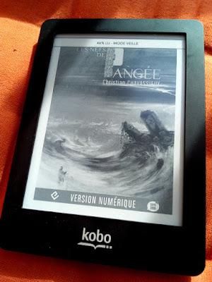 """ebook : """"Les nefs de Pangée"""" de Christian Chavassieux"""