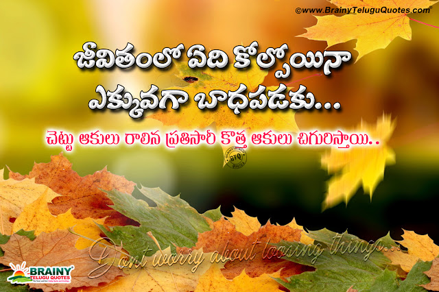 Telugu Messages, Online Success Quotes in Telugu, Self Motivational Thoughts Quotes in Telugu