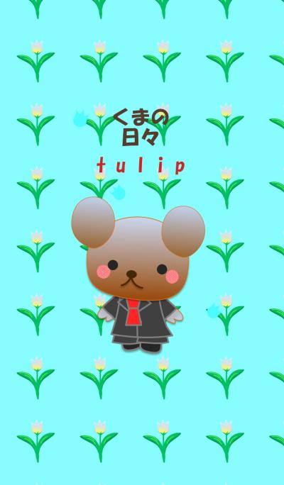 Bear daily(Tulip)