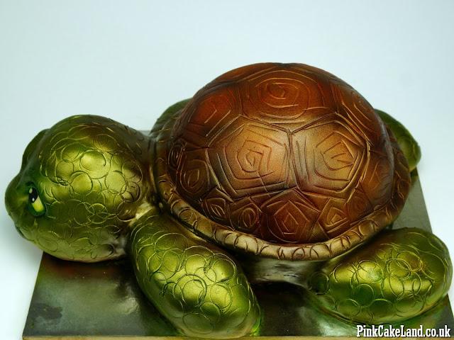 Turtle Cake London
