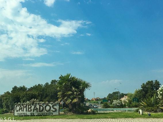 Cambados, capital do Albarino. Galicia