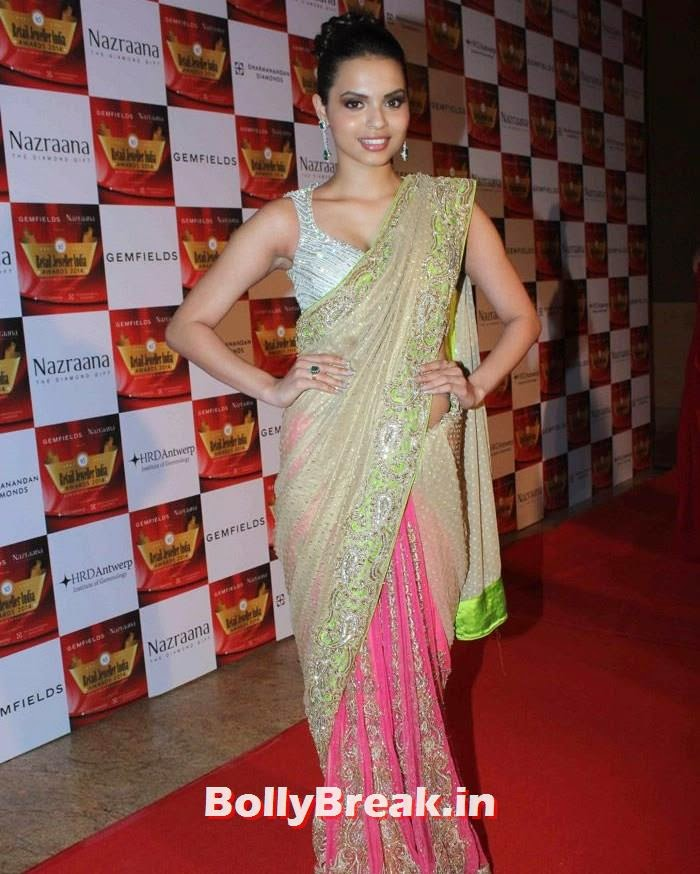 Gail D'Silva, Pics of Celebs in Sexy Dresses & Gowns at Gemfields & Nazraana Retail Jeweller India Awards 2014