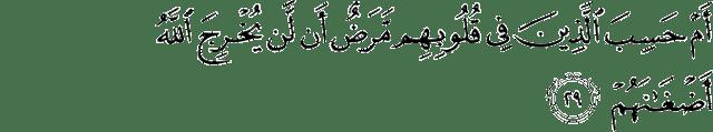 Surat Muhammad ayat 29