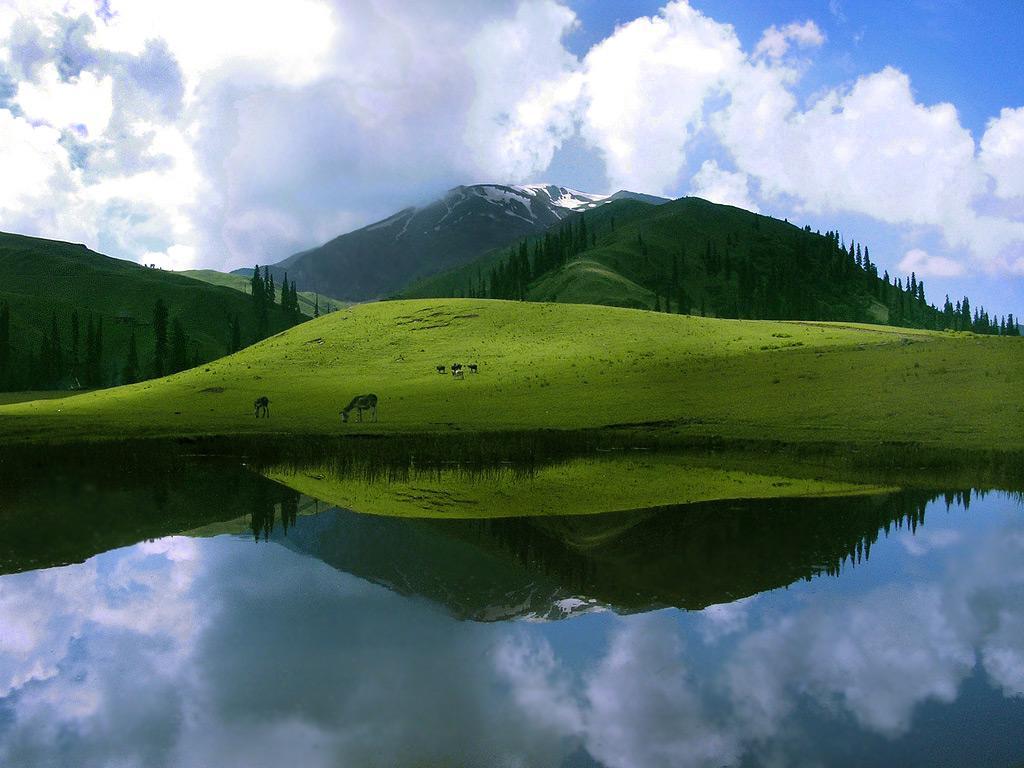 Natural Beauty: Sheosar Lake Deosai Plains Pakistan