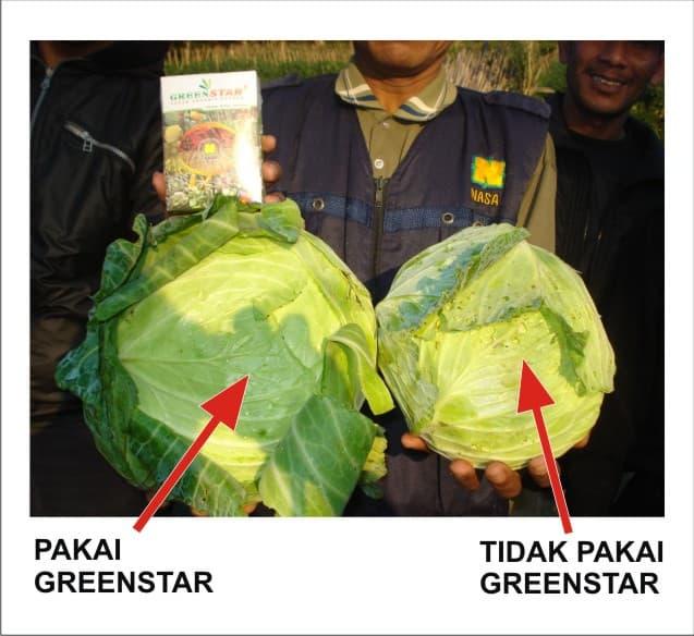 Greenstar NASA, Pupuk Organik Serbuk Modern