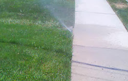 Overspray and mist from sprinkler