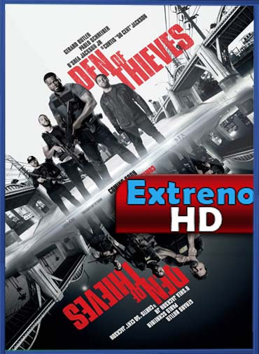 El Robo Perfecto (2018) | DVDRip Latino HD GDrive 1 Link