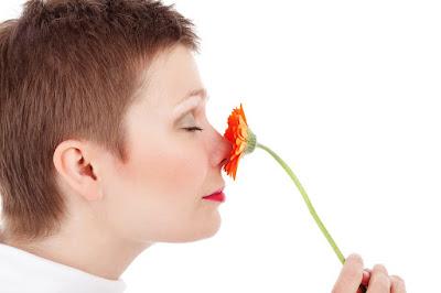 natural remedy, Herbal, body odor, eleminate body odor, remove body odor, treat body odor,