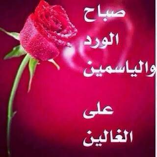 صور صباح الخير حبيبتي 2019 أجمل و أحلى الصور الصباحية للعشاق
