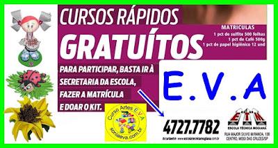 E.V.A - CURSO GRATUITO