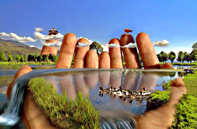Картинки по запросу природа