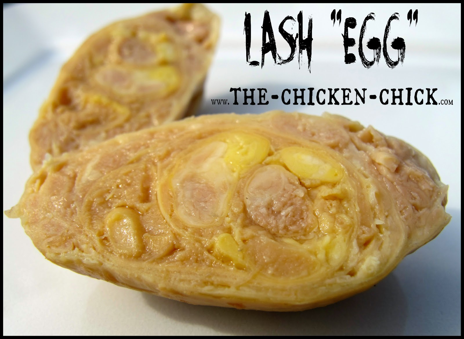 """This hot mess, laid by one of my hens, is often referred to as a """"lash egg,"""" and is a very misunderstood phenomenon in backyard chicken keeping. Lash eggs consist primarily of coagulated pus, not yolk or egg white. I took the liberty of  renaming the lash egg more appropriately, a Pus Coagulegg.  It's got a nice ring to it, don't you think? Unfortunately for the hen, the Pus Coagulegg is no laughing matter as the prognosis for a bird producing them is poor, at best."""
