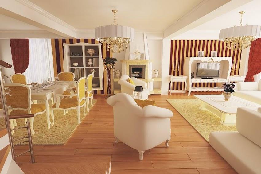 Design interior case stil clasic de lux - Amenajari interioare vile clasice Tandarei
