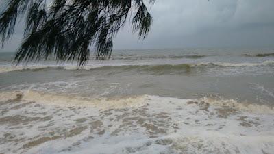 Fotografia colorida. Dia cinzento, mar com a onda quebrando e formando espuma, um galho de árvore à esquerda. Ao fundo, na linha do horizonte, céu cinza-claro.