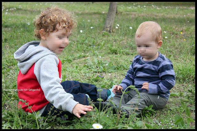 Petit Chou et Lou dans pâquerettes