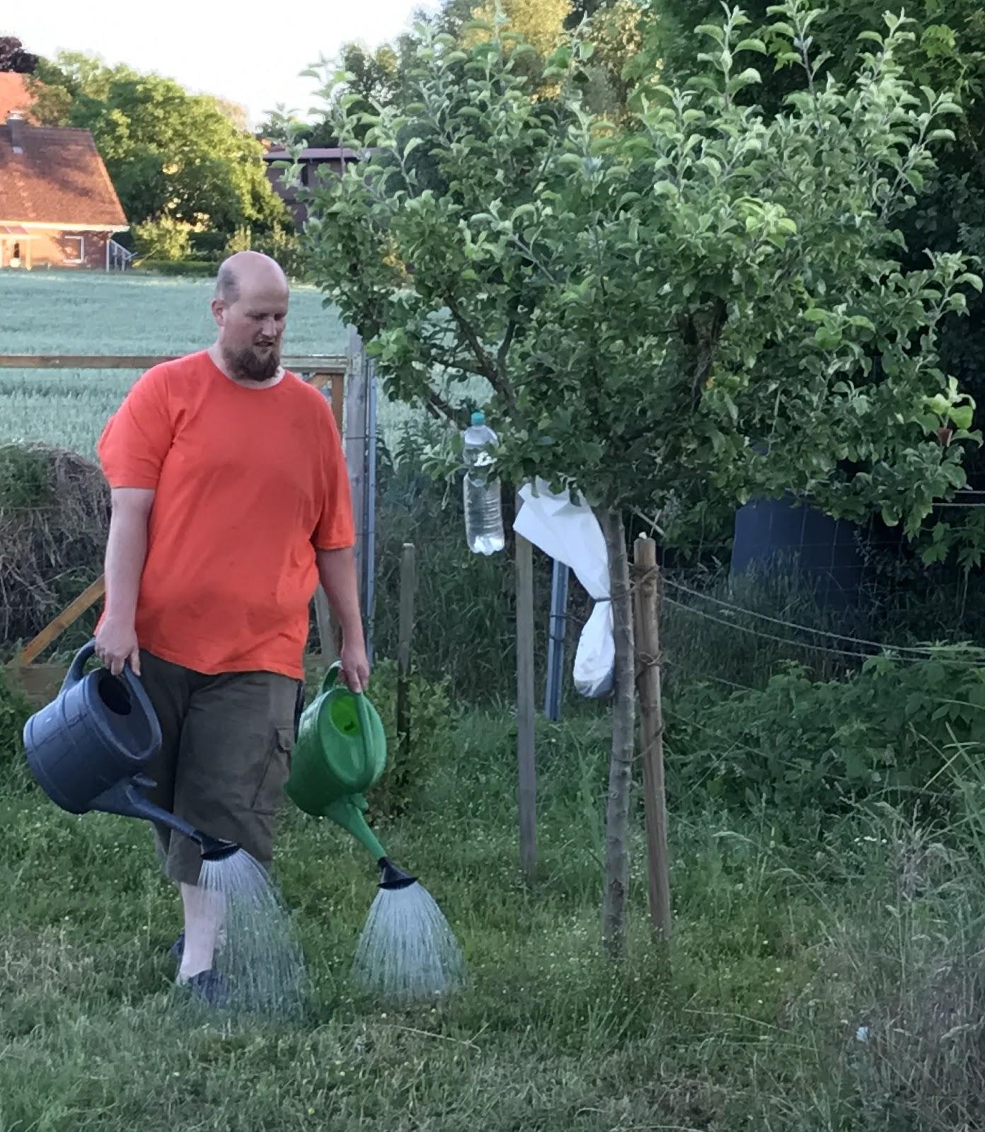 Welchen Gartenschlauch Kaufen Iberty