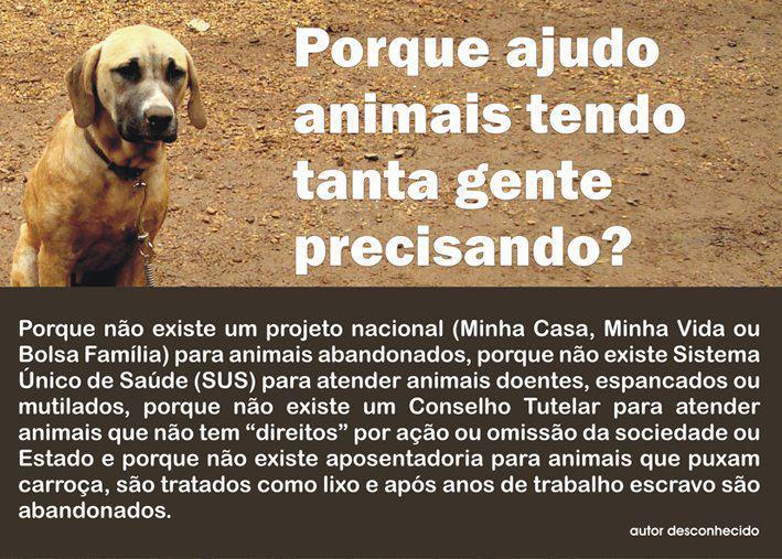 Amor Sem Preço: PORQUE AJUDO ANIMAIS TENDO TANTA GENTE
