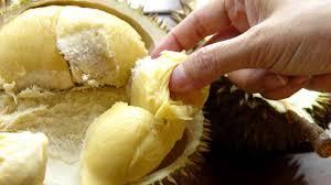 Bà bầu có ăn được sầu riêng không?