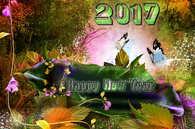 New Year 2017 3D HD Images Download Free