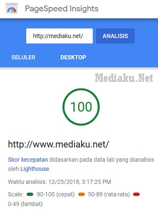 Cek Skor PageSpeed Insight
