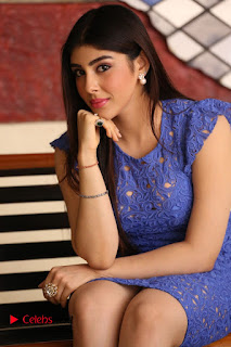 Actress Aditi Singh  Pictures in Short Dress at Movie Interview  0131