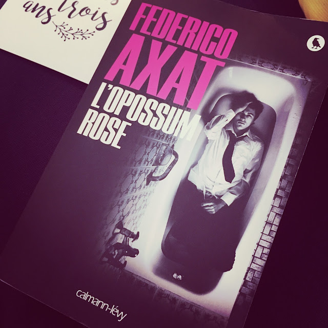Chronique littéraire L'opossum rose par Mally's Books
