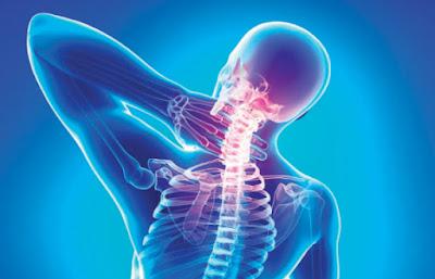 عناوين وارقام اطباء جراحات العظام بالاسكندرية