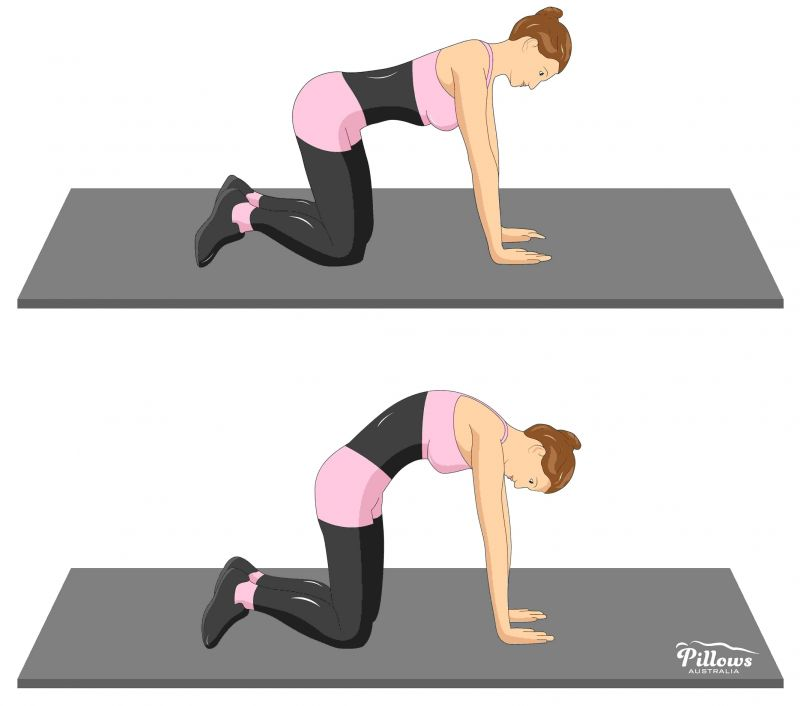 18 Easy Stretches In 18 Minutes To Help Reduce Back Pain - CAT AND CAMEL