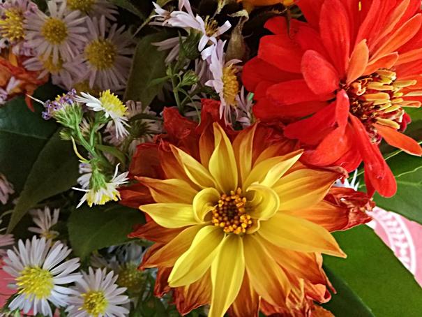 herbstblumenstrauss