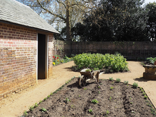 Kew palace--kitchen garden