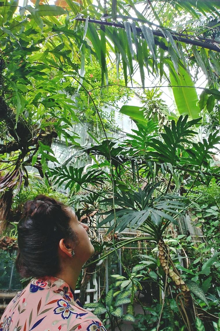 Szlafrok w tropikach