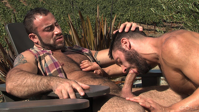 gay porno Spencer Reed tendre chatte serrée