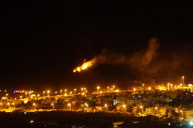 Έσβησε η φωτιά στο Λαδοχώρι Ηγουμενίτσας