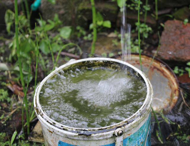 Ayo Gunakan Air di Rumah secara Hemat
