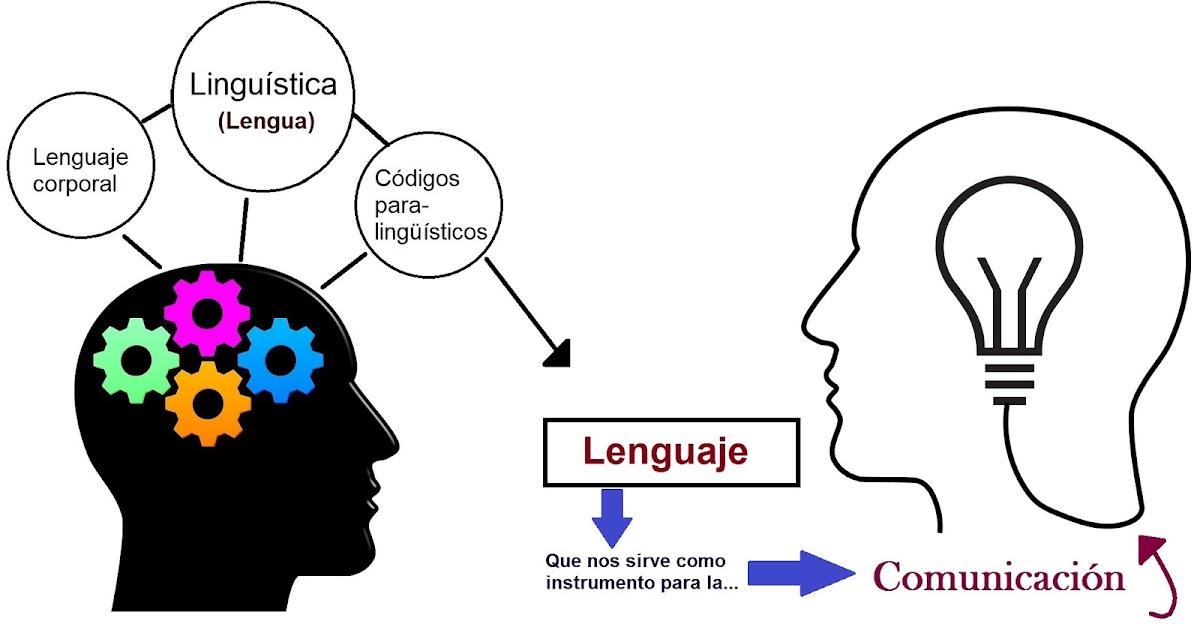Diferencias Entre Lengua Léxico Lingüística Gramática