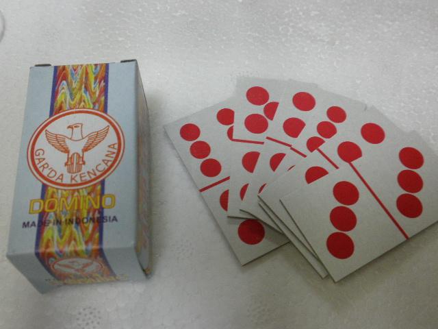 Hakikat Domino