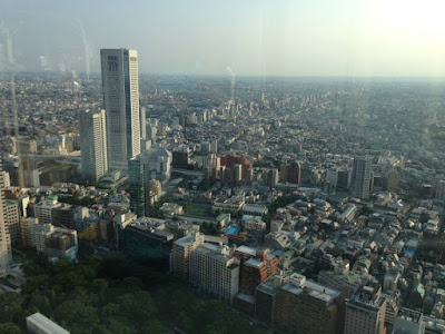 View from North observatory of Tokyo Metropolitan Government Building